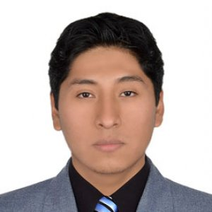 Foto de perfil de Victor Guillermo Quispe Palomino